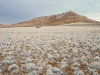 Grupo de viajeros perdidos en la inmensidad del desierto del Namib.